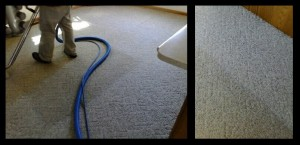carpet cleaning pic 4